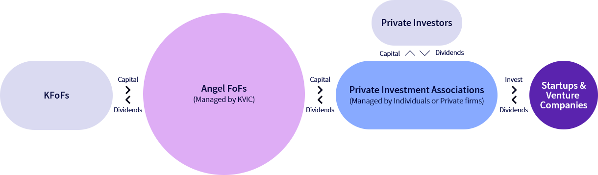 Structure of Angel Fund of Funds